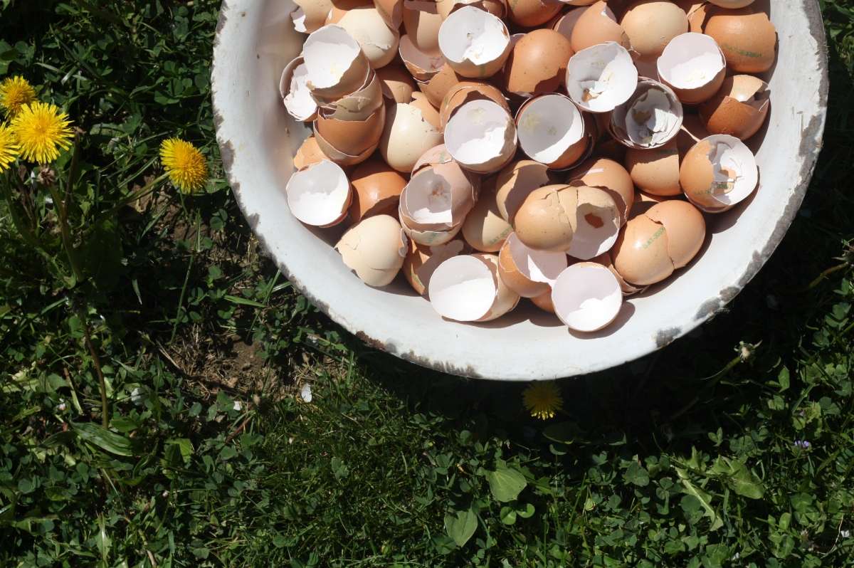 Ostern, Osterbrot und vieleTraditionen