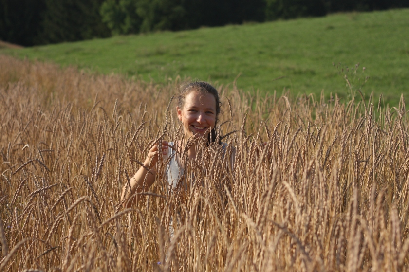 Getreideernte (8)