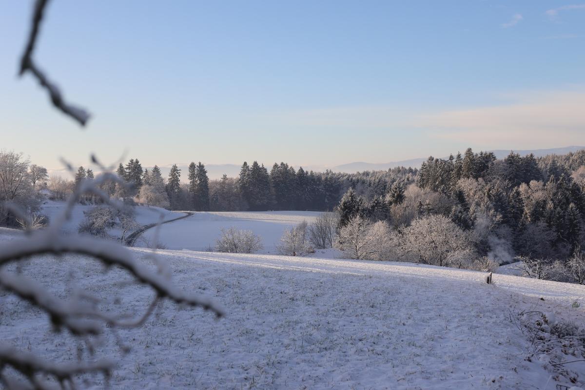 Die Winterruhe amHof